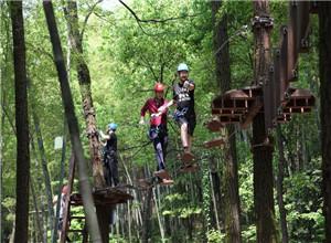 穿越丛林拓展设备